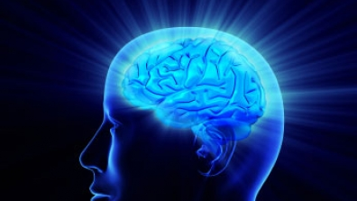 Study-Finds-Way-To-Get-Antibody-Therapies-Into-Brain